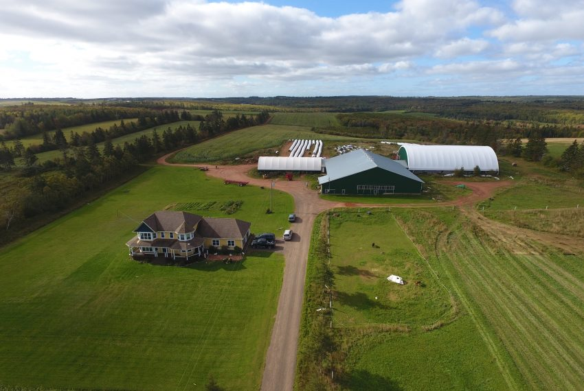 Dairy Farm - Centrally Located - Hunter River, PE - Atlantic Canada