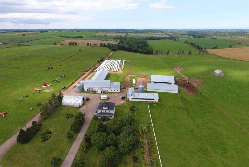 Dairy Farm - Fredericton, PE - Atlantic Canada Farms for